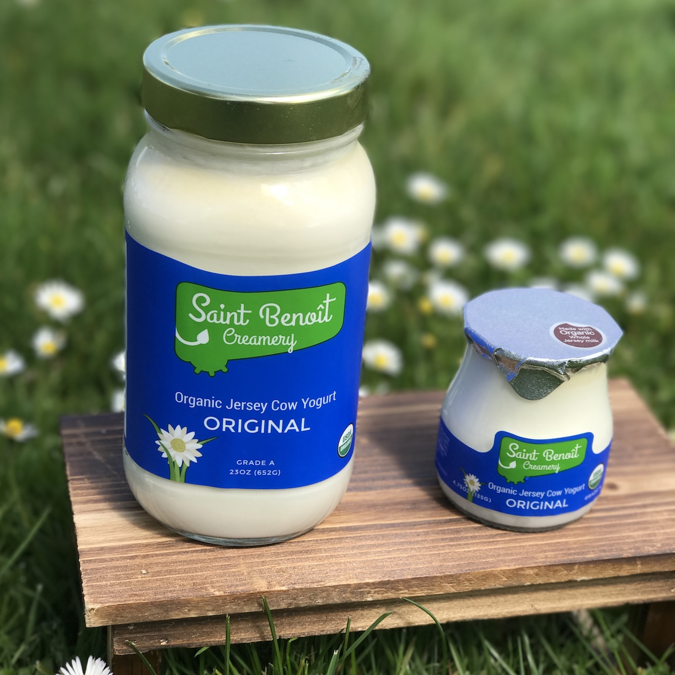 organic whole milk yogurt