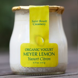 meyer lemon yogurt 5 oz glass